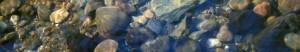 cropped-pebbles.jpeg