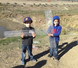 boys holding cages picture