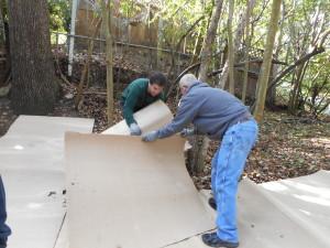 Sheet mulching (step 1)